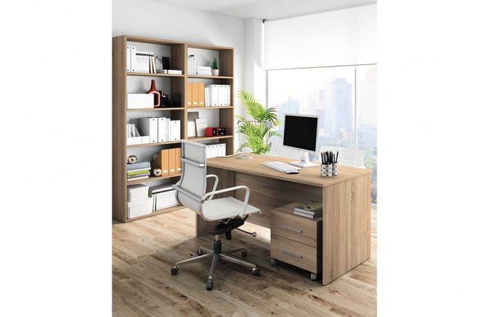 Decoraci n de oficinas y despachos en casa for Armarios para despachos