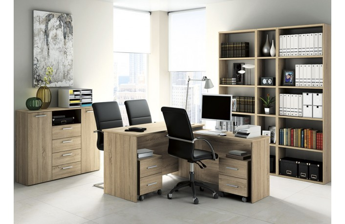 Consejos e ideas para decorar despachos grandes