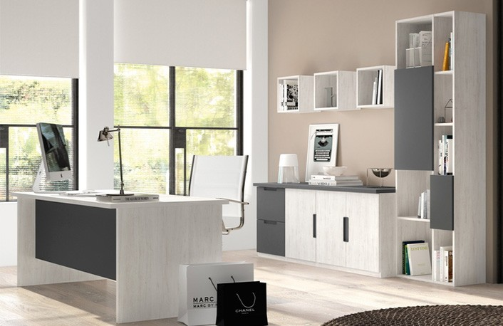 Consejos de decoraci n de oficinasblog de decoraci n de for Que son muebles de oficina